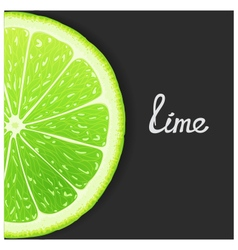 Just lime vector image