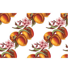peach branches seamless pattern vector image