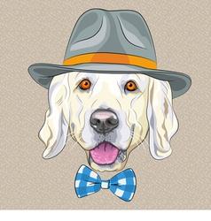 hipster dog Golden Retriever vector image vector image