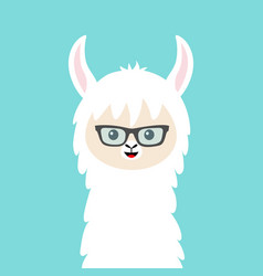 Alpaca llama animal face in sun glasses cute vector