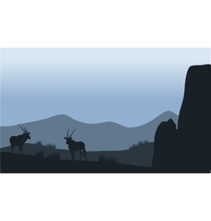 Antelope in hills silhouette vector