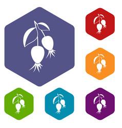 Dogrose berries branch icons set hexagon vector