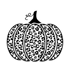 leopard pumpkin vector image