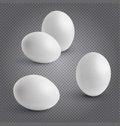 set realistic chickens of egg easter chicken vector image