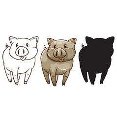 Sketches of a pig vector