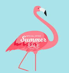summer sale concept with colorful cartoon pink vector image