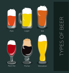 Types of beer vector