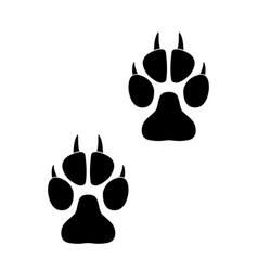 footprints of paws of an animal vector image vector image