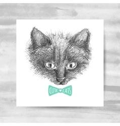 Cat face sketch vector