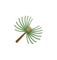 Isolated spruce leaves flat icon rosemary vector