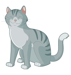 Cartoon smiling cat vector image vector image