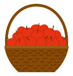Apples in basket harvest festival fruit vector