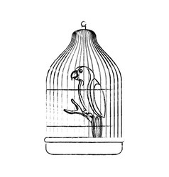 Cute bird parrot in cage mascot vector