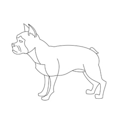 French bulldog linear vector