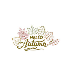 Hello autumn label vector
