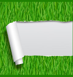 ripped paper with green grass seamless pattern vector image