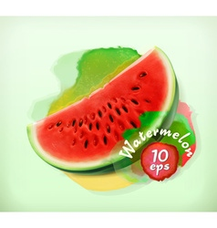 Watermelon summer fruit vector image