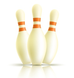 Skittles for bowling on a white background vector image