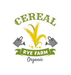 organic cereal emblem with rye ears and grain vector image