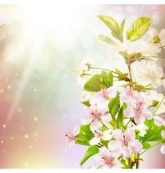 Blooming apple tree against sky eps 10 vector