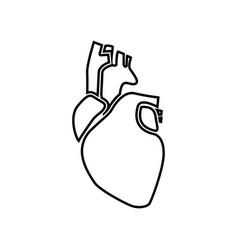 Human heart black color icon vector