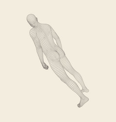 Man stands on his feet human body wire model vector
