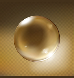 realistic glass sphere transparent vector image