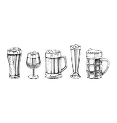 set hand drawn beer glasses vector image