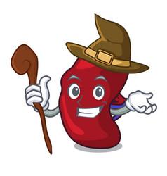 Witch spleen mascot cartoon style vector