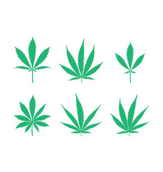 cannabis leaves set vector image