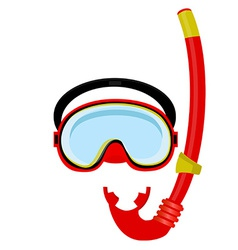 Red diving mask and tube vector image vector image