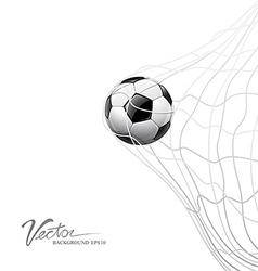 Soccer ball in net on goal vector image