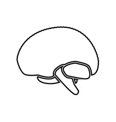 Brain black color icon vector