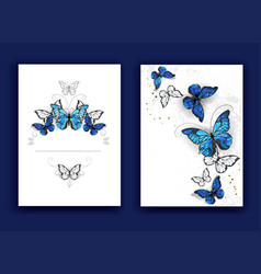 brochure design with butterflies morpho vector image