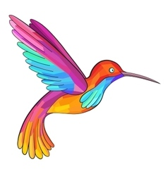 Colorful Colibri Hummingbird Great for company vector image