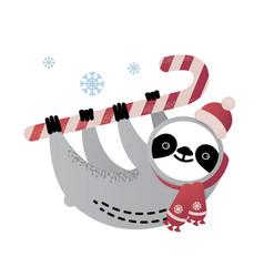 Cute sloth bear animal with a candy cane vector