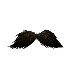 detailed fancy black hipster mustache on white vector image