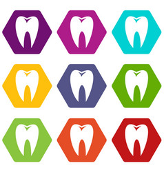 tooth icon set color hexahedron vector image
