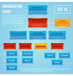 Organisational chart infographic vector image vector image