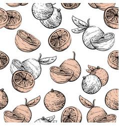 citrus fruit background seamless pattern vector image