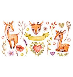 cute badeer forest watercolor nursery vector image