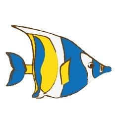 Fish icon image vector