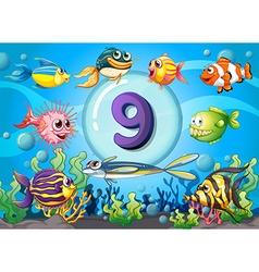 Flashcard number nine with nine fish underwater vector