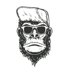 gorilla monkey in baseball cap design element vector image