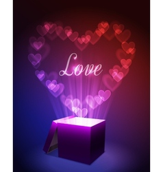 Love Gift Concept vector image