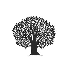 Oak logo vector