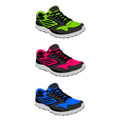 sneakers in vector image