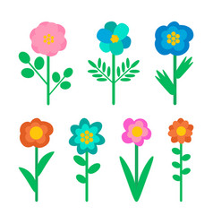 Wild flowers isolated objects nature elements vector
