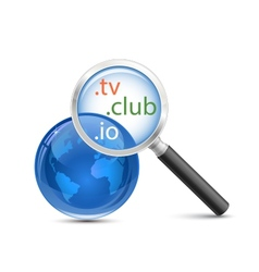 Domain search icon vector image