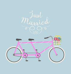 hipster bicycle wedding just marriage flat vector image